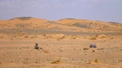40 La siesta en el desierto
