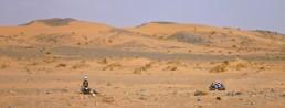 cropped-40-la-siesta-en-el-desierto.jpg